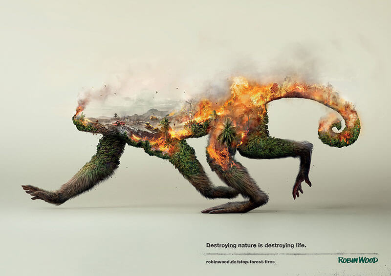 destroying-life-by-photoby-fy-7